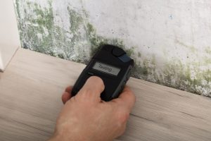Mold Testing Denver Asbestech Mold Inspections And Testing